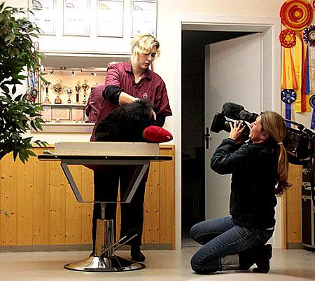 Bayerische Fernsehe in unseren Salon, Janur 2009